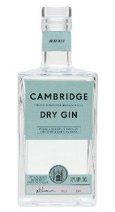 Gin 700 ML  42% ABV